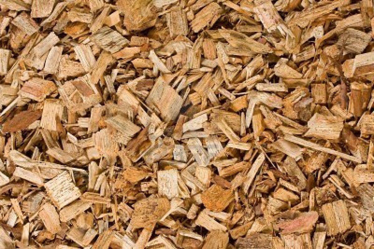 Okina se calienta con la madera de sus bosques gananzia - Maderas moral ...